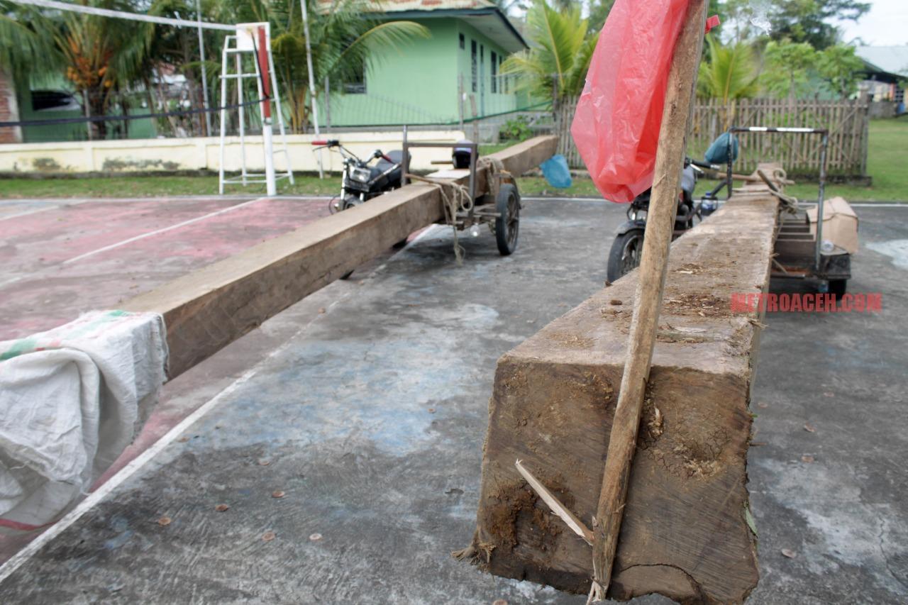 Korem Lilawangsa Bongkar Ilegal Logging